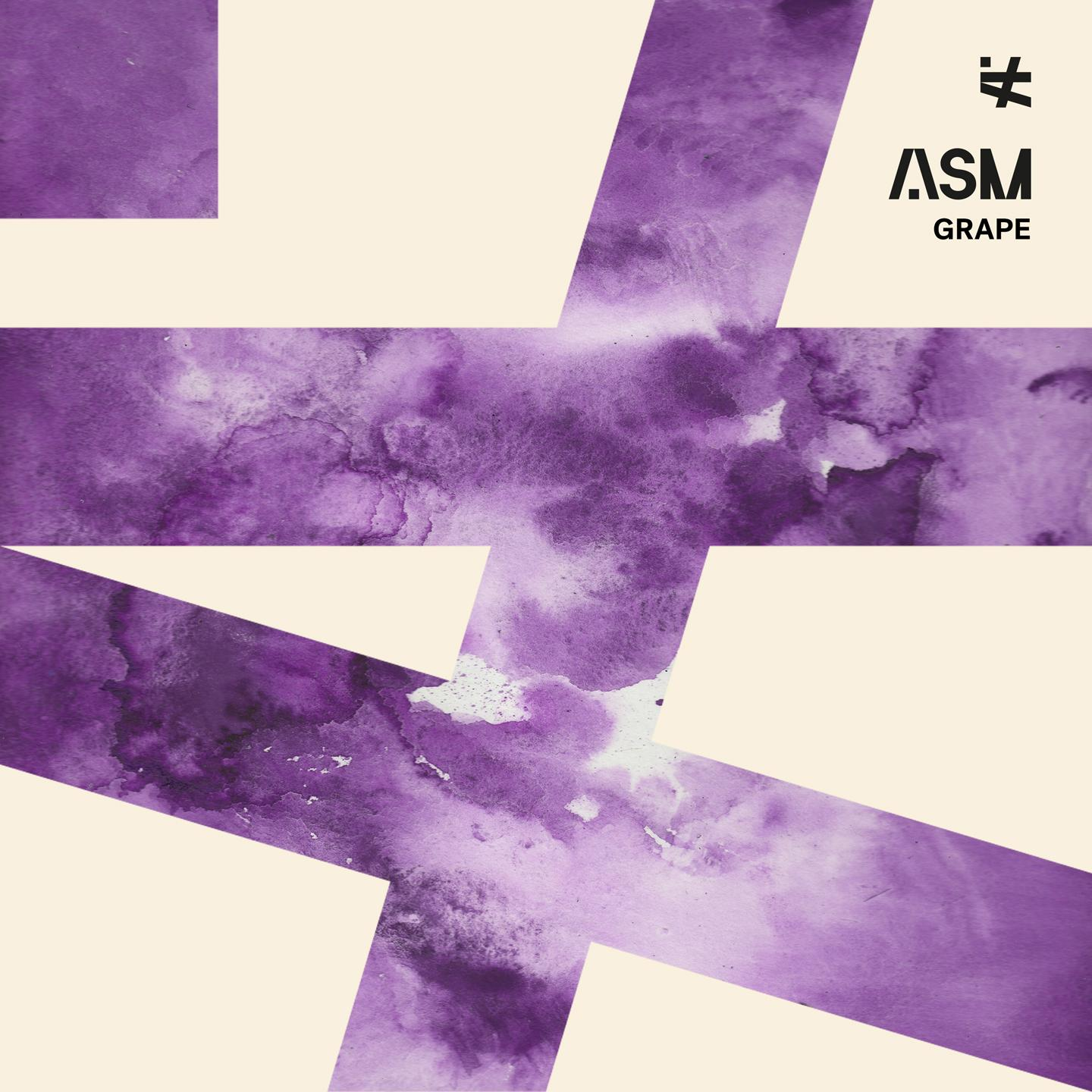 ASM - A State of Mind