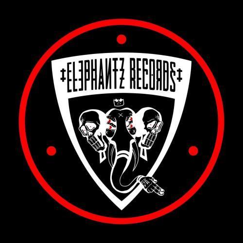 ELECTRO STATION spécial Elephantz Records : l'interview et le mix de DVMBO