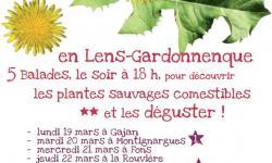 Festival des Salades Sauvages par L'œil vert