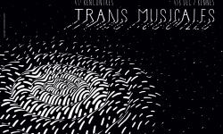 Transmusicales de Rennes #41