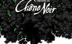 LE THEÂTRE DU CHÊNE NOIR - Avignon